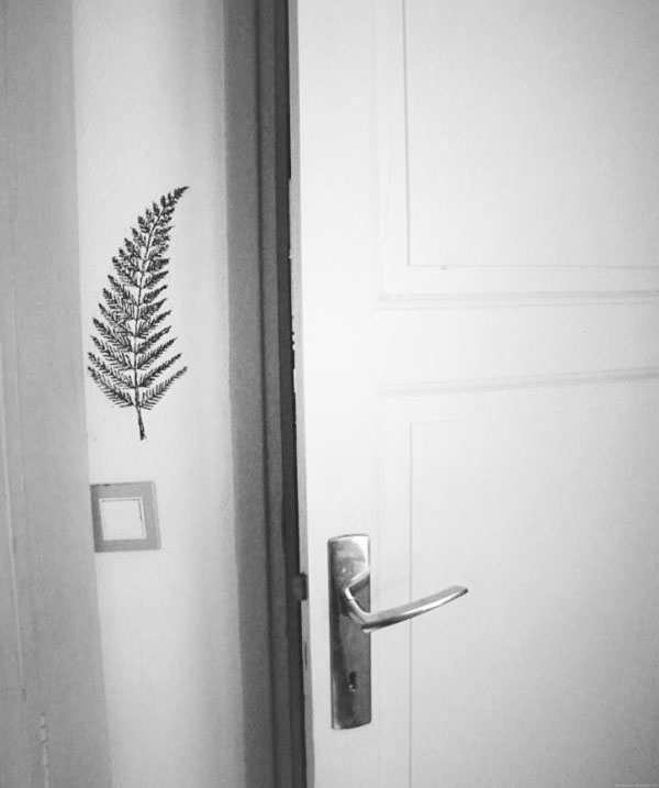 0 adelaide aronio fern wall.JPG