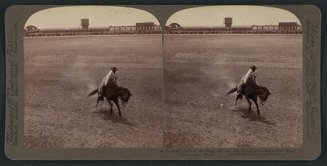 A Bucking Bronco Showing Off for President Roosevelt in Cheyenne, Wyoming | Circa 1903