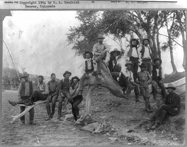 Fourteen Cowboys from the F.D.W. Ranch in New Mexico Posing on a Tree Trunk | Circa 1904