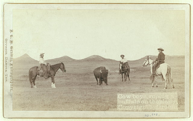 Three Cowboys Roping a Buffalo on the Plains | Circa 1887