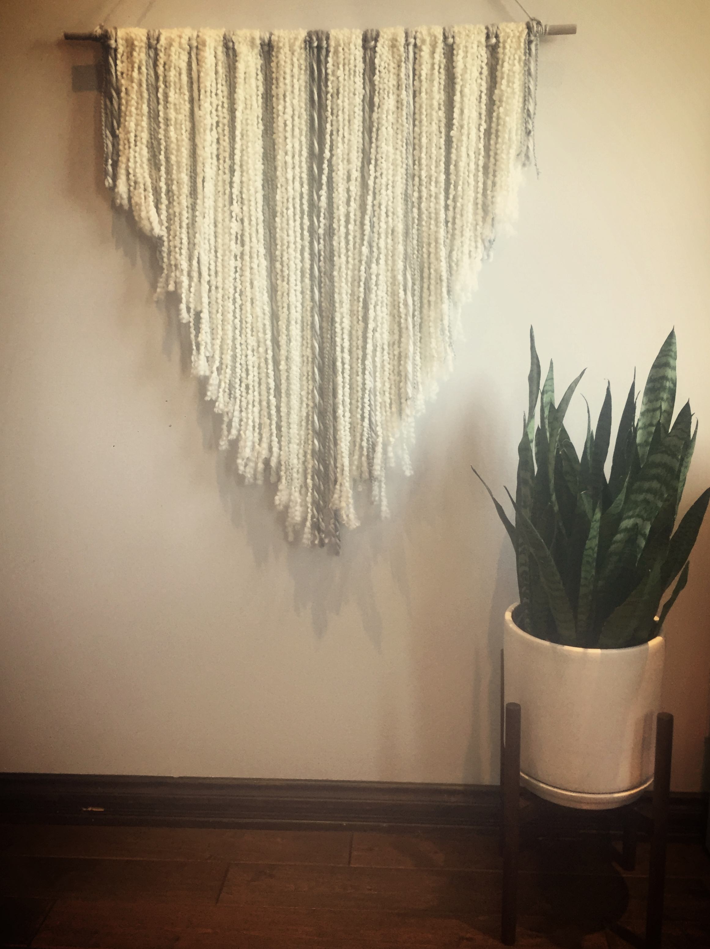 wall and plant.JPG