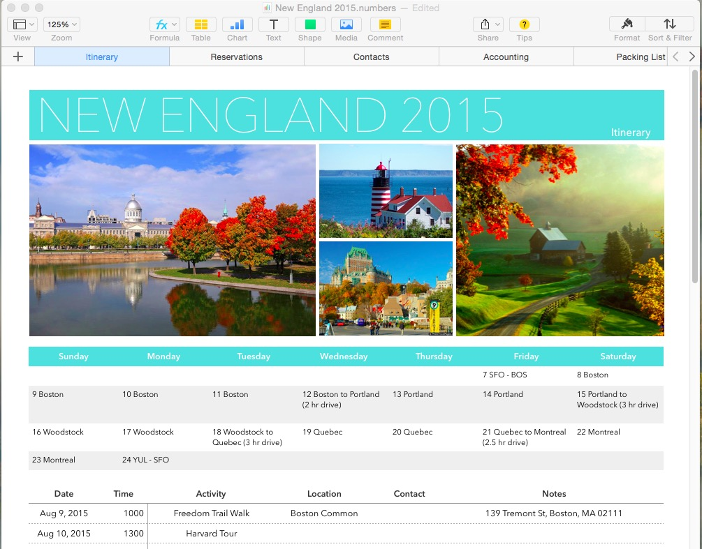 iwork numbers has a good travel planning template i've been using since the '09 version. the most recent template is just plain gorgeous.