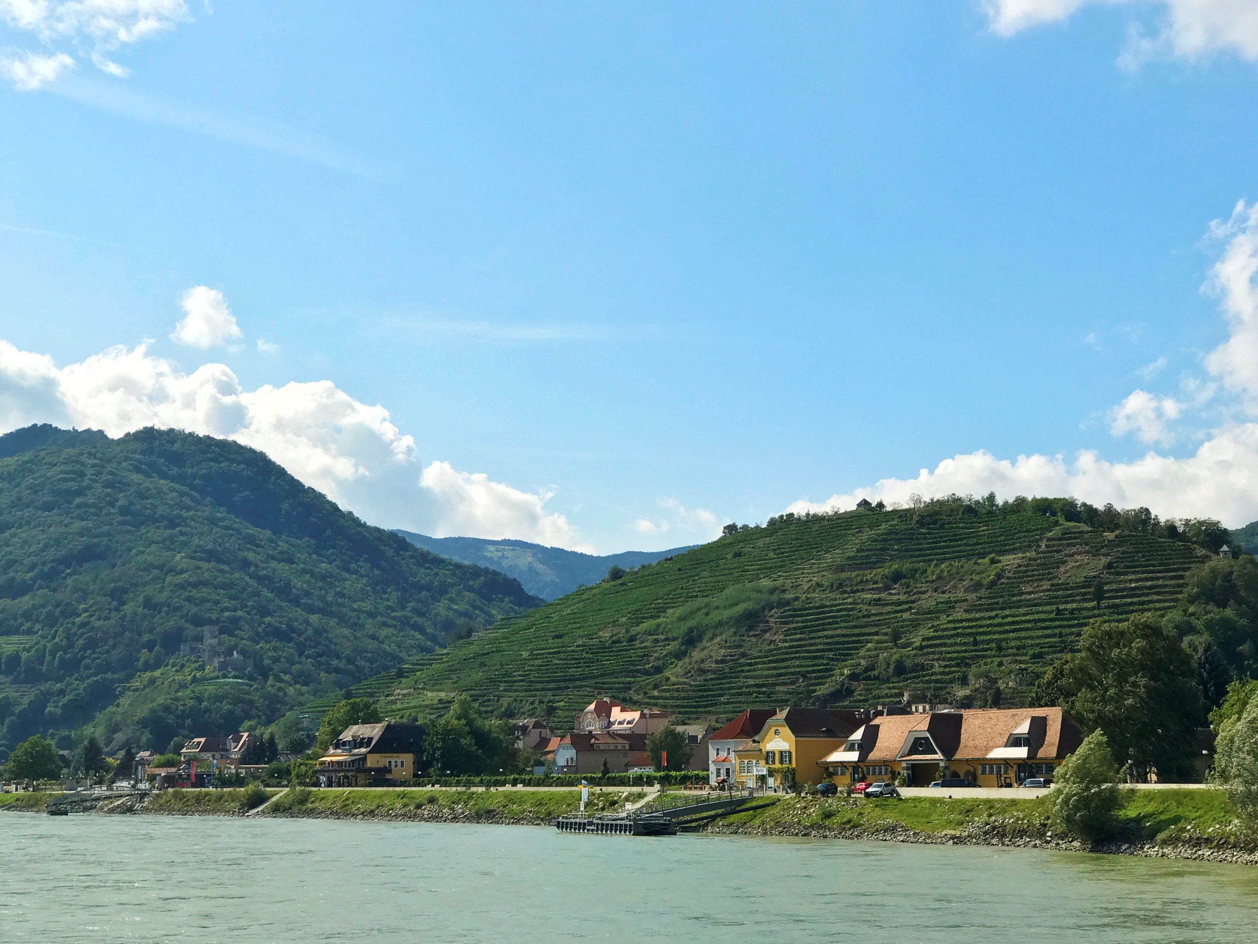 Castle ruins, vineyards, churches and red-roofed villages along the banks of the Danube in Austria's Wachau Valley are what dreams are made of. (PHOTO BY BIANCA BUSTOS-VELAZQUEZ)