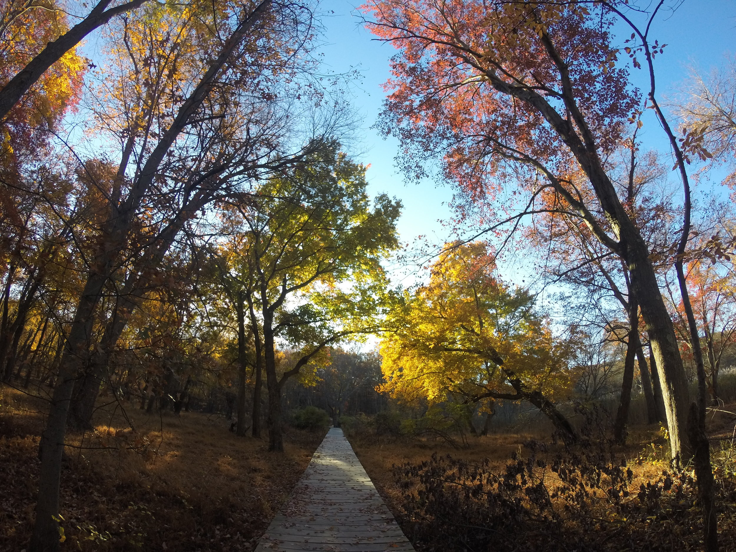 Fall Hikes in New Jersey