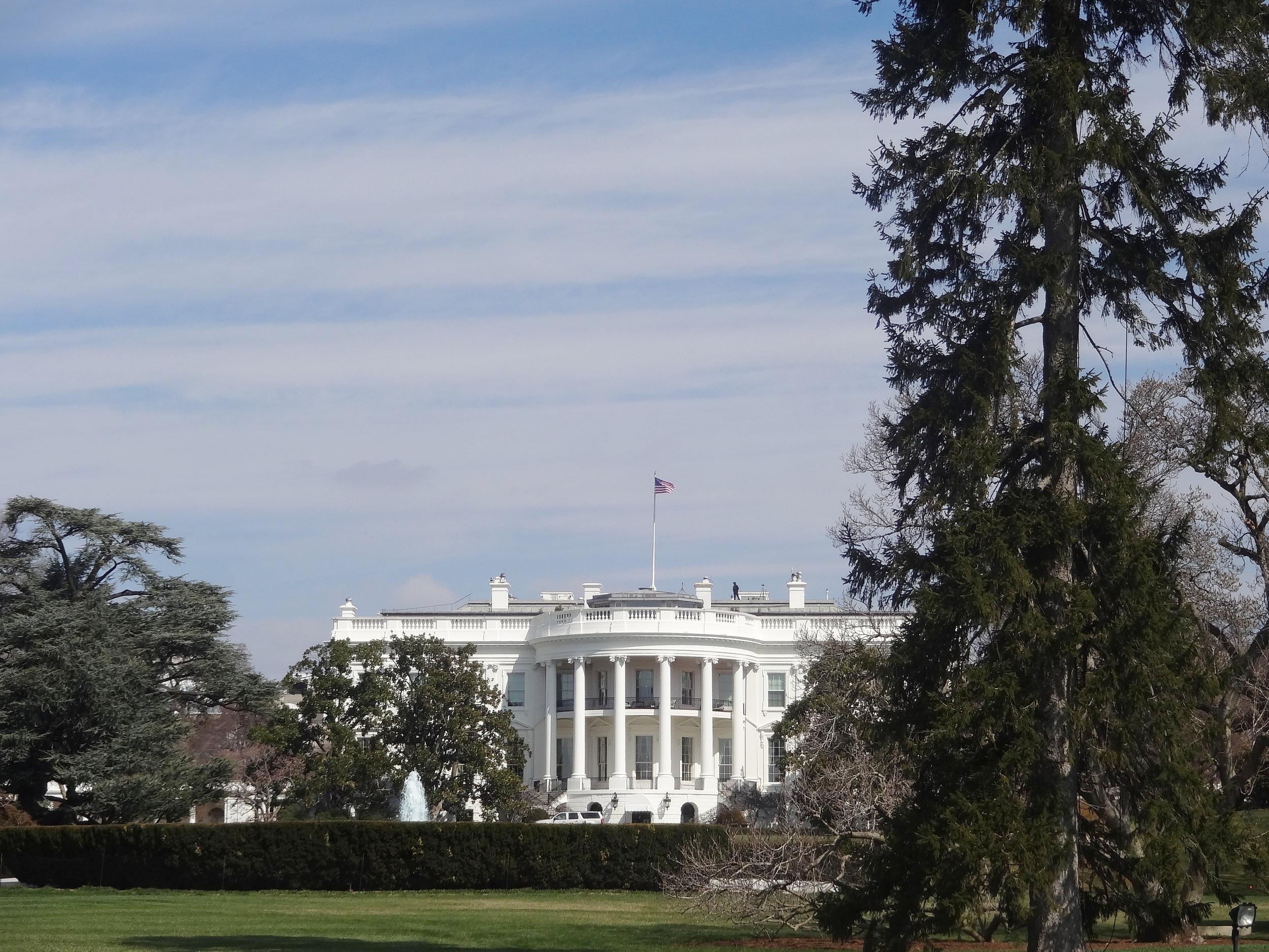 The White House | Washington, DC 2013
