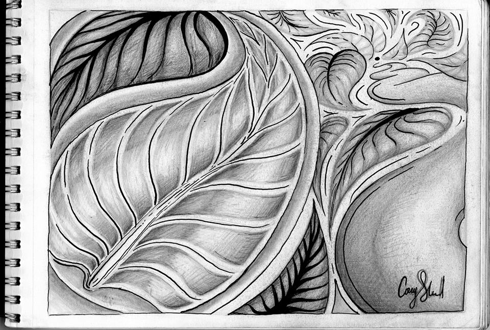 2-D DRAWINGS   Charcoal, ink, Pointillism and Realism    |    2009-current