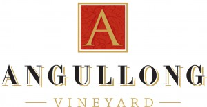 Angullong-Vineyard-logo-300x156.jpg