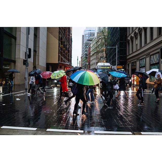 So good to see the rain ☔️☔️☔️ . . . . #iloveaustralia #visitsydney #streetphotography #streetphotographyinternational #aussie_street #aussiestreet19