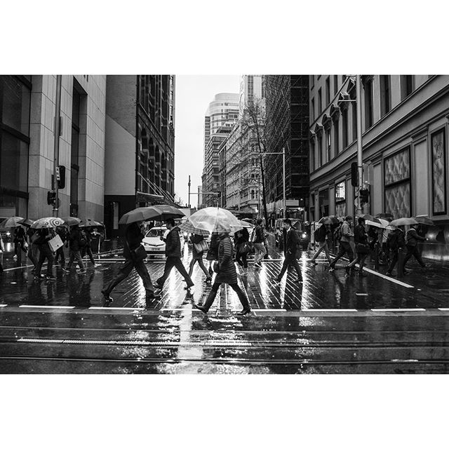 Wet weather ☔️🤗☔️ . . . . #visitsydney #iloveaustralia #aussie_street #streetphotography #streetphotographyinternational #monochrome #aussiestreet19