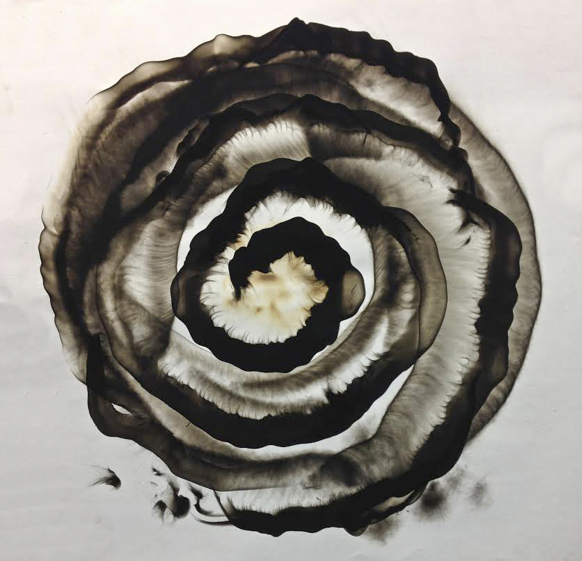 """Untitled  48"""" x 48""""  Smoke On Paper"""