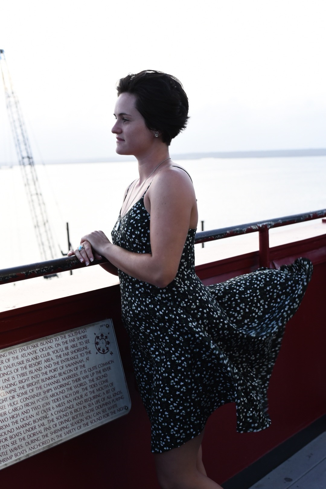 """""""Oh my gosh! quick grab it, pull it down!"""". Her dressed flew up in an unladylike manner as an impertinent gust blew through the railing. Click. Perfect angle to add some drama. Who wants to look ladylike in a picture anyway."""