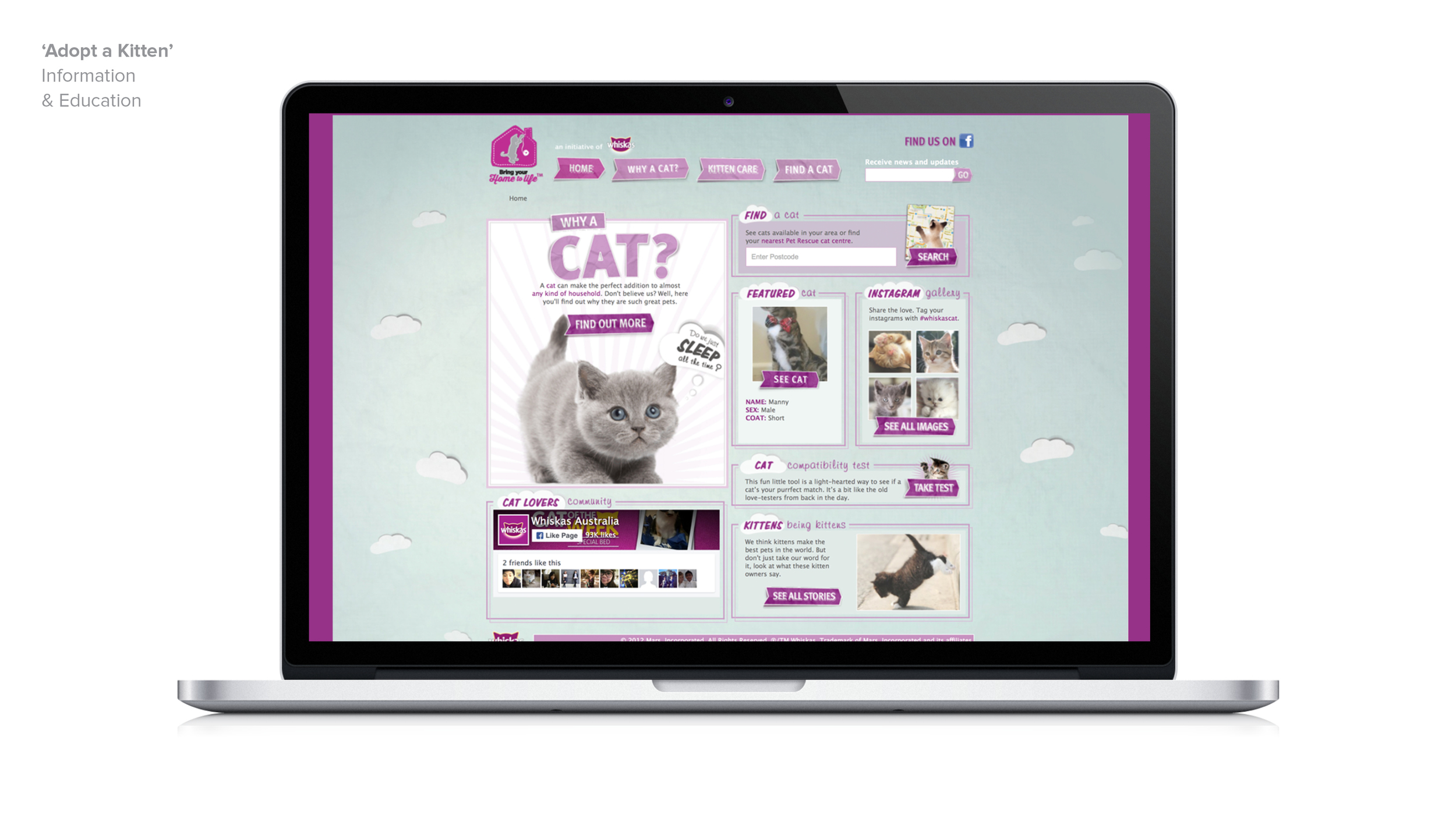 BDN_website_tiles_whiskas_AAK6.jpg
