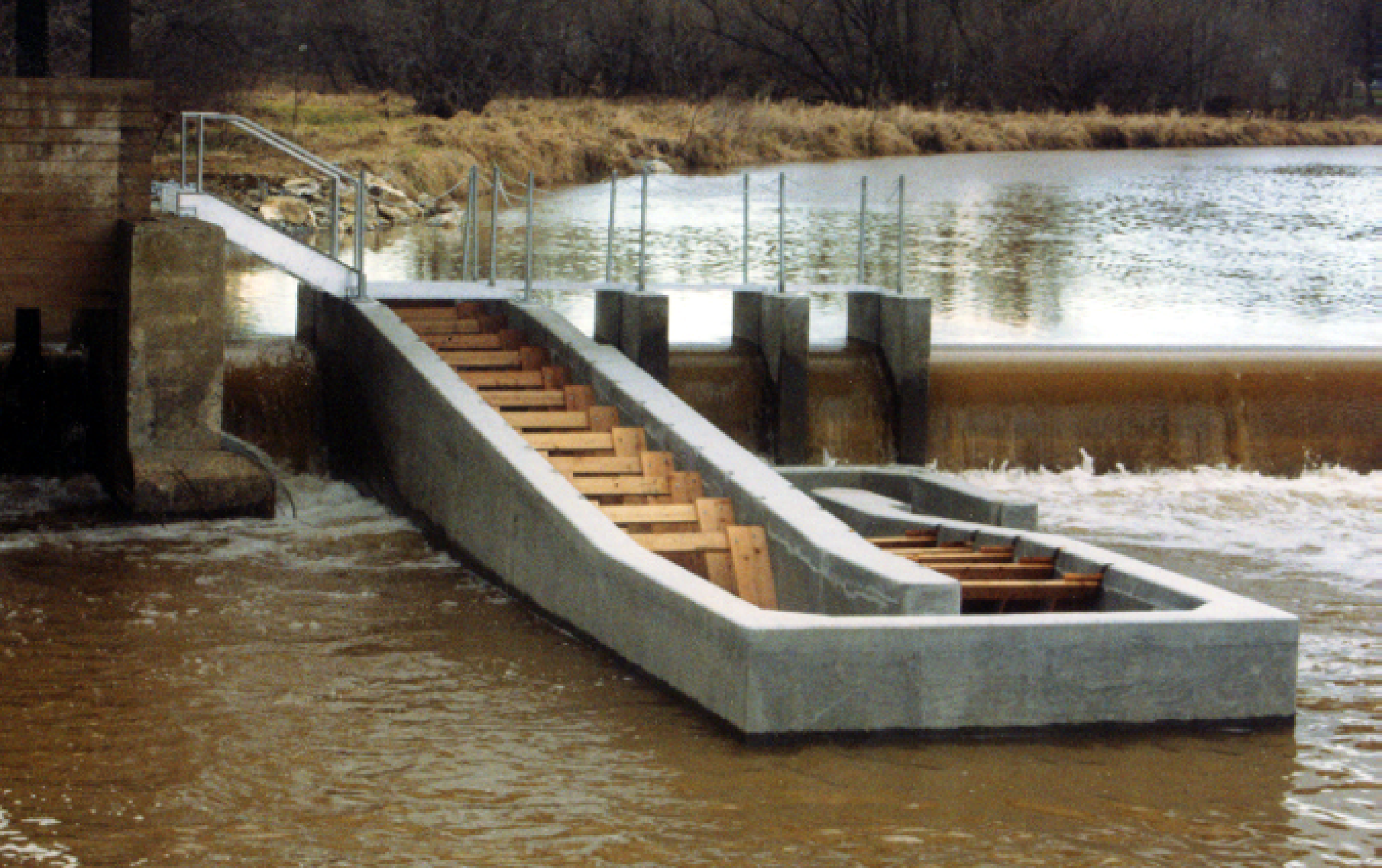 FISH PASS AT CONESTOGA WATER TREATMENT PLANT DAM