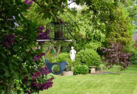 Mum's garden and looking lush