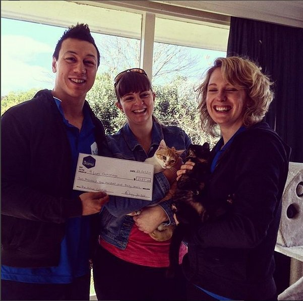 yoga with kittens charity cheque alisha instagram