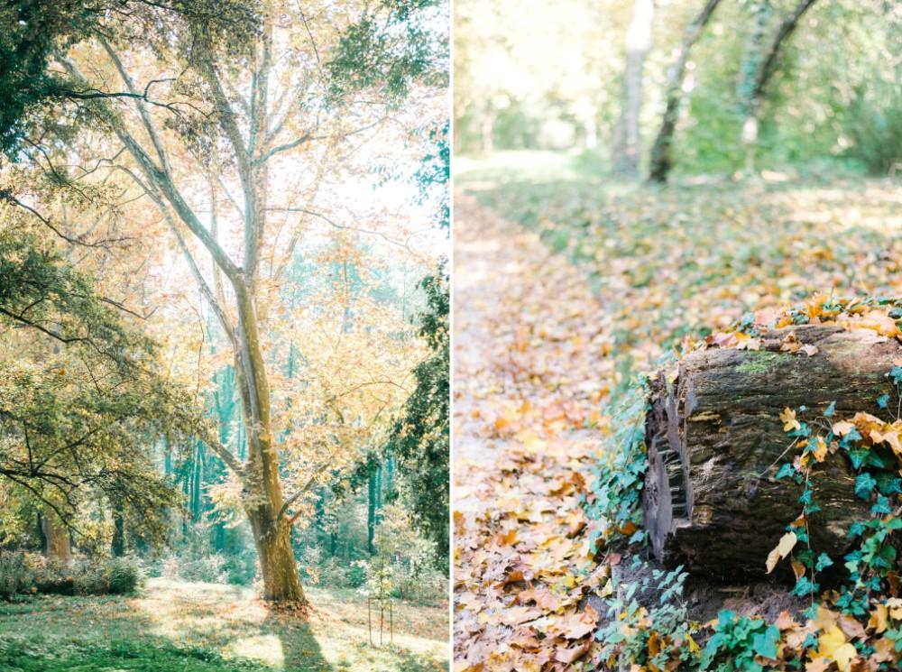 Beloved őszi inspirációs esküvői fotózás-34.jpg