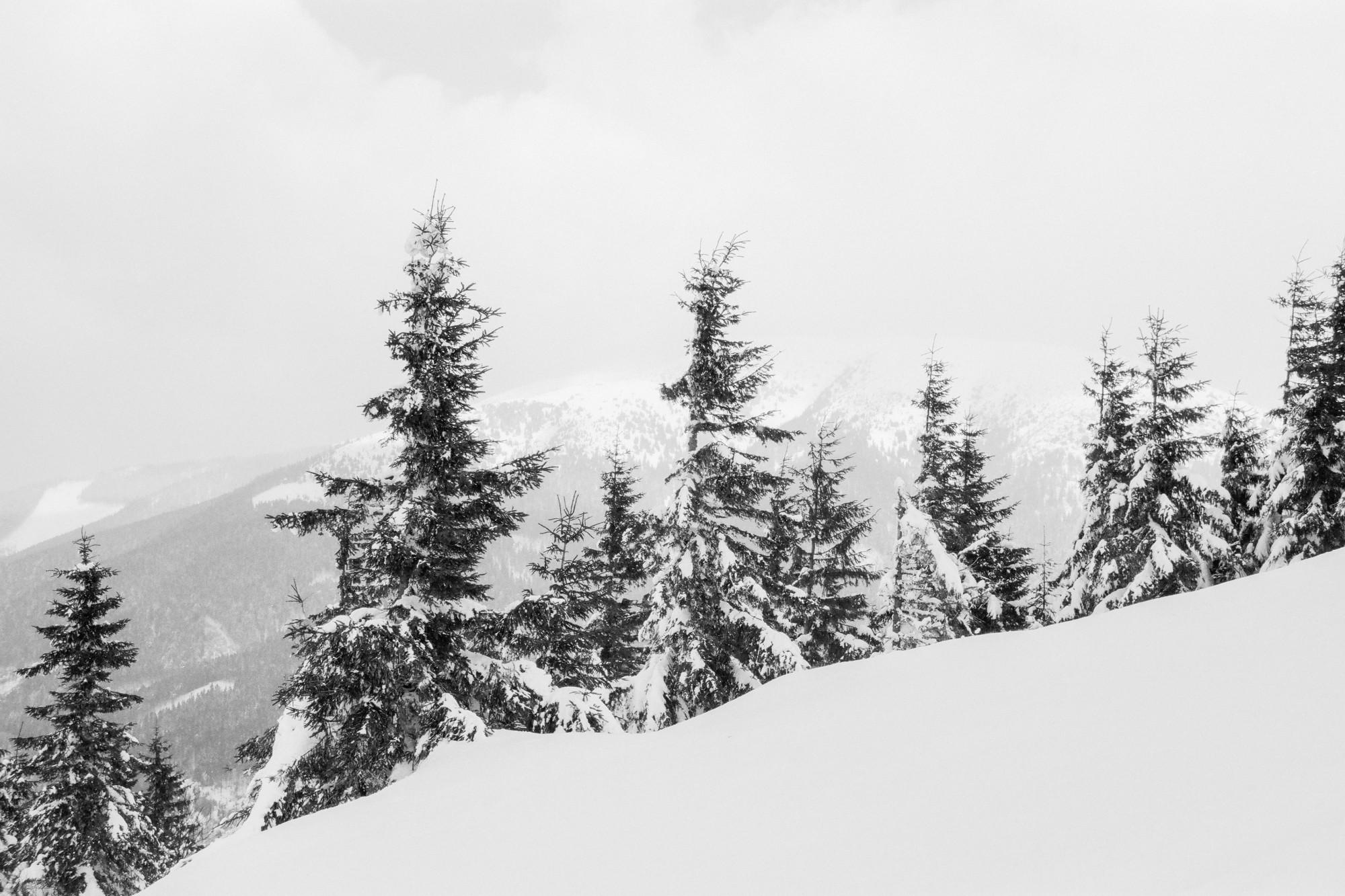 Tatra hotalpazas fatra-23.jpg