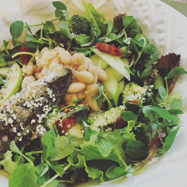 "Not bad for a 10 minute office lunch 🥗 ♥️My intern and I are feeling pretty nourished after our healthy ""indulgence"" with real, fresh, clean, whole, delicious, nutrient dense foods I keep on hand — super delicious and ultra nutritious with some local farm to table treats grown by my friends at Unbound Glory in Pomfret CT. Mixed greens, sunflower sprouts, pea tendrils, and kohlrabi (all unwashed for a hearty dose of gut friendly soil based organisms, yummm), with some wild sardines in olive oil, white beans, sundried tomatoes, apple, broccoli (all organic), lemon juice/avocado oil/hemp seed dressing I whipped up, and a touch of sea salt. So easy. Not fussy. So satisfying. Feeling so grateful and energized. Super fuel for some super women 🙌🏼💥 . . #foodislove #farmtotable #healthyindulgence #oxygenfirst #eatrealfood #foodismedicine #functionalnutririon #integrativehealth #guthealth #healthylifestyle #nutrientdense #superwomanfuel #glutenfreedairyfree #paleo #pegan #functionalmedicine #healthylunch #bluezones"