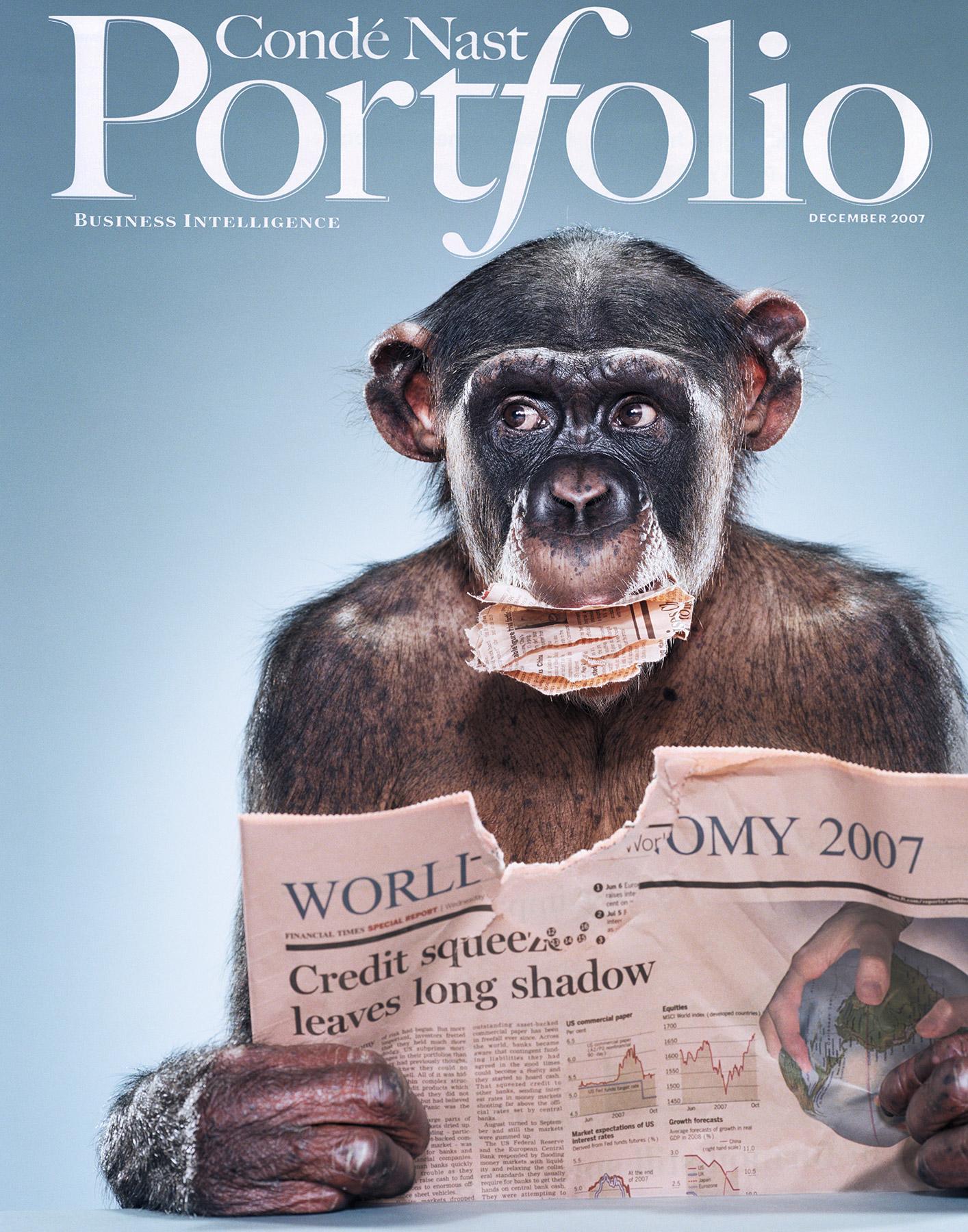 portfolio_chimp_cover.jpg