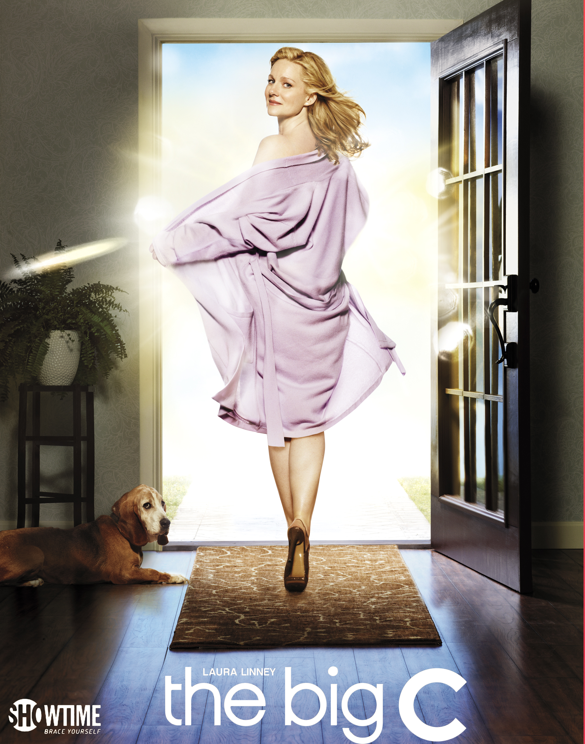 Laura LInney - The Big C Poster