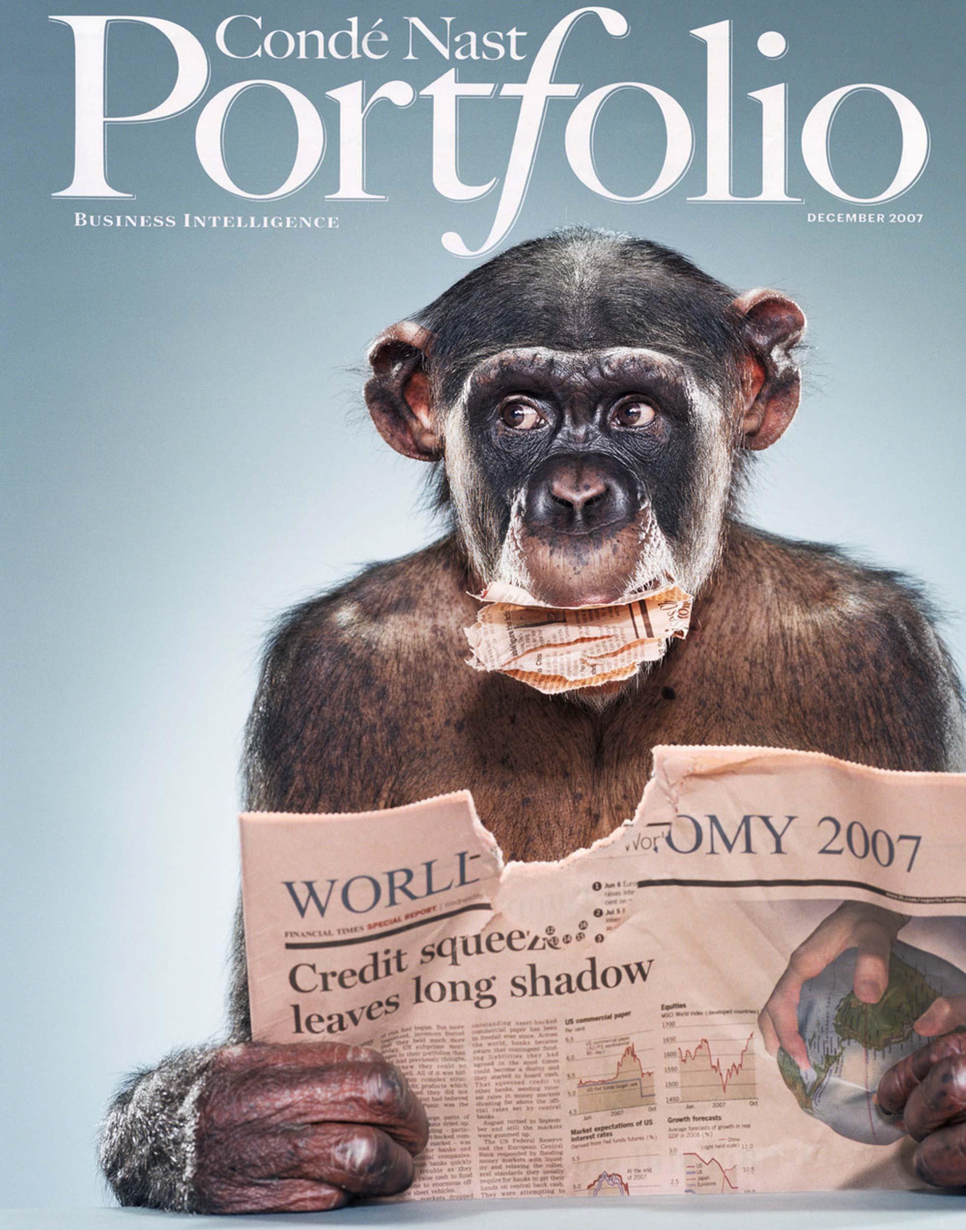 Portfolio+Chimp+Cover.jpg