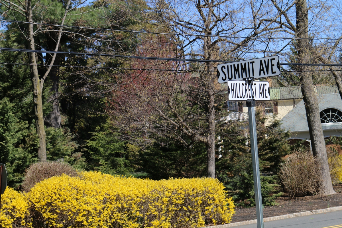 Residents of Summit, NJ receive discounted home energy audits by participating in Summit's Home Energy Insight program.