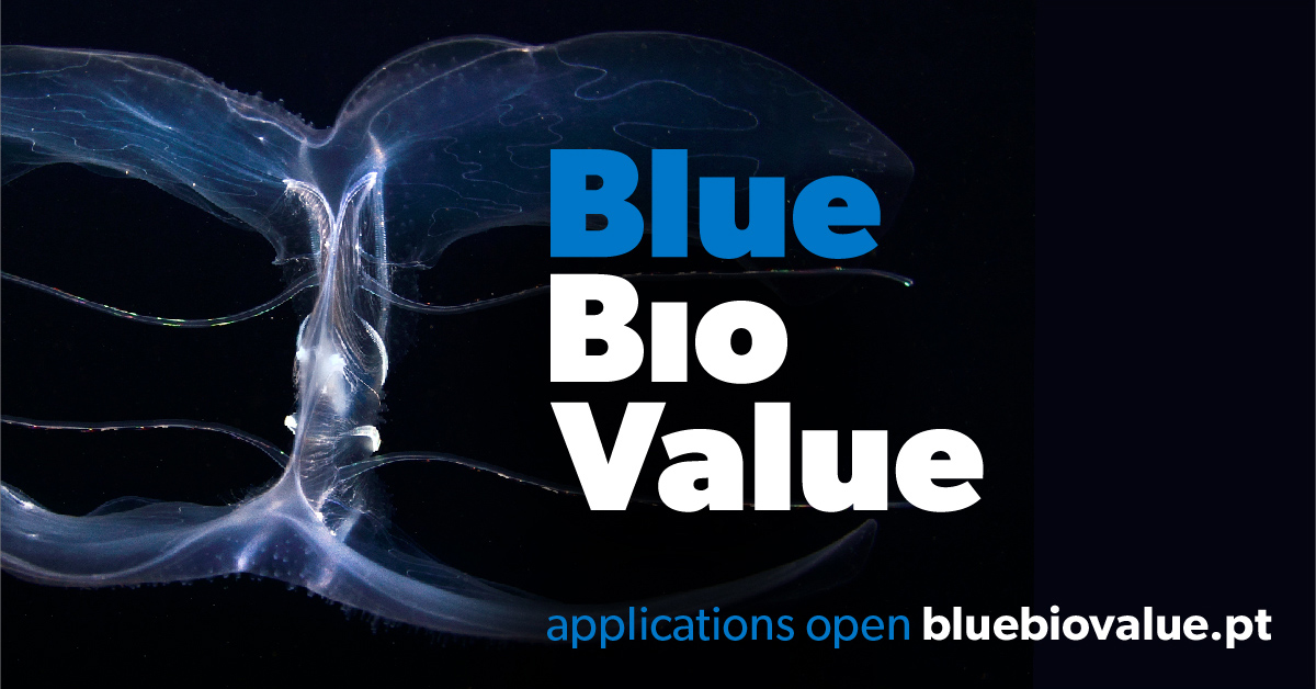 BLUE BIO VALUE