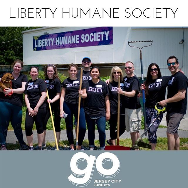 If you love animals, join us Saturday, June 8th for GO Jersey City! The list of needs and projects never end for Liberty Humane Society, so we want to help them meet these needs, and maybe hold some kittens. . Sign up and more info in bio or gojc.org . . #jerseycity #dccjerseycity #downtownjerseycity #gojerseycity #gojc #gojerseycity2019 #dtjc #community #church #jerseycitychurch #JCNJ #JerseyCityNJ #libertyhumanesociety