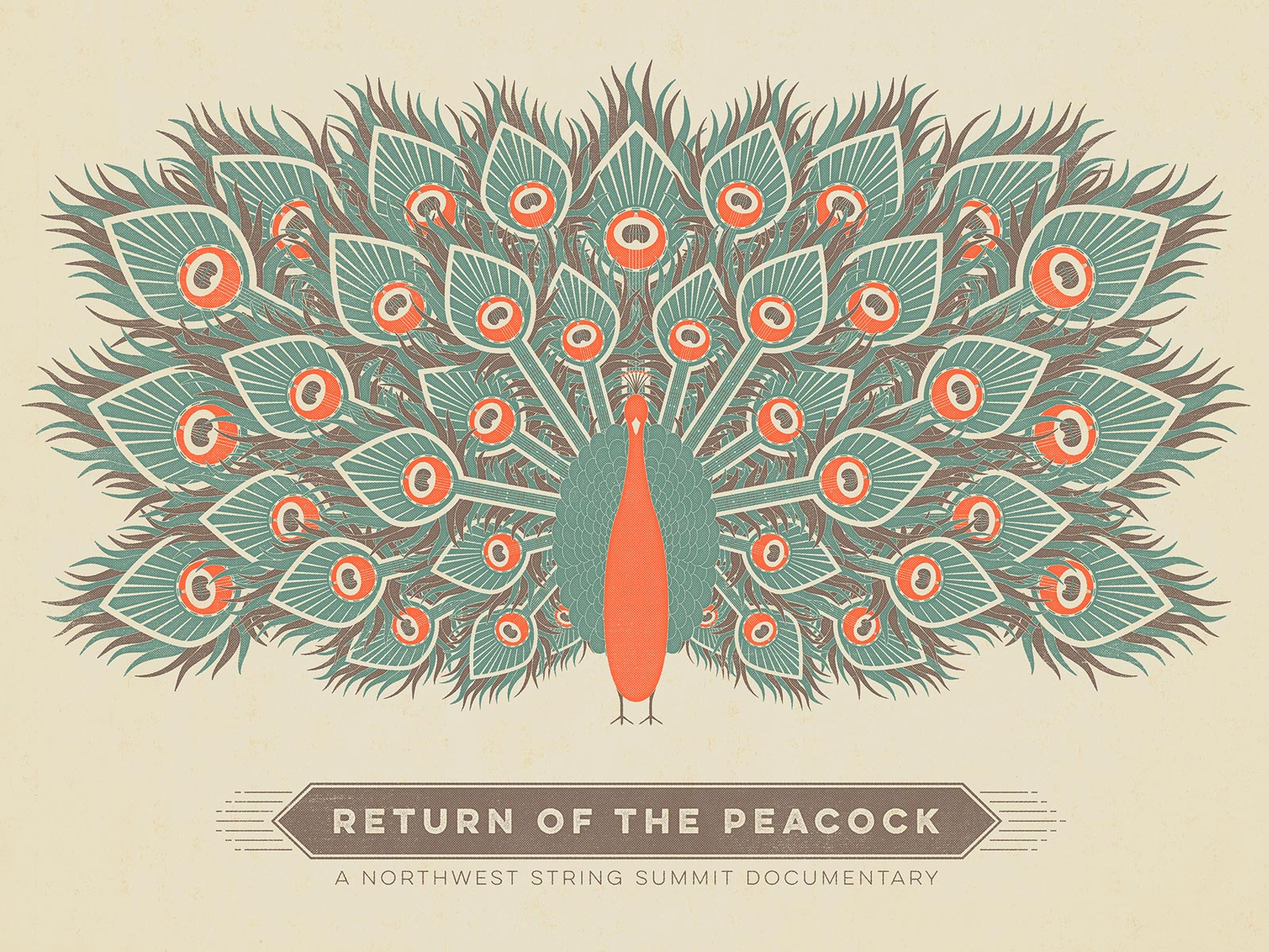 Return of the Peacock