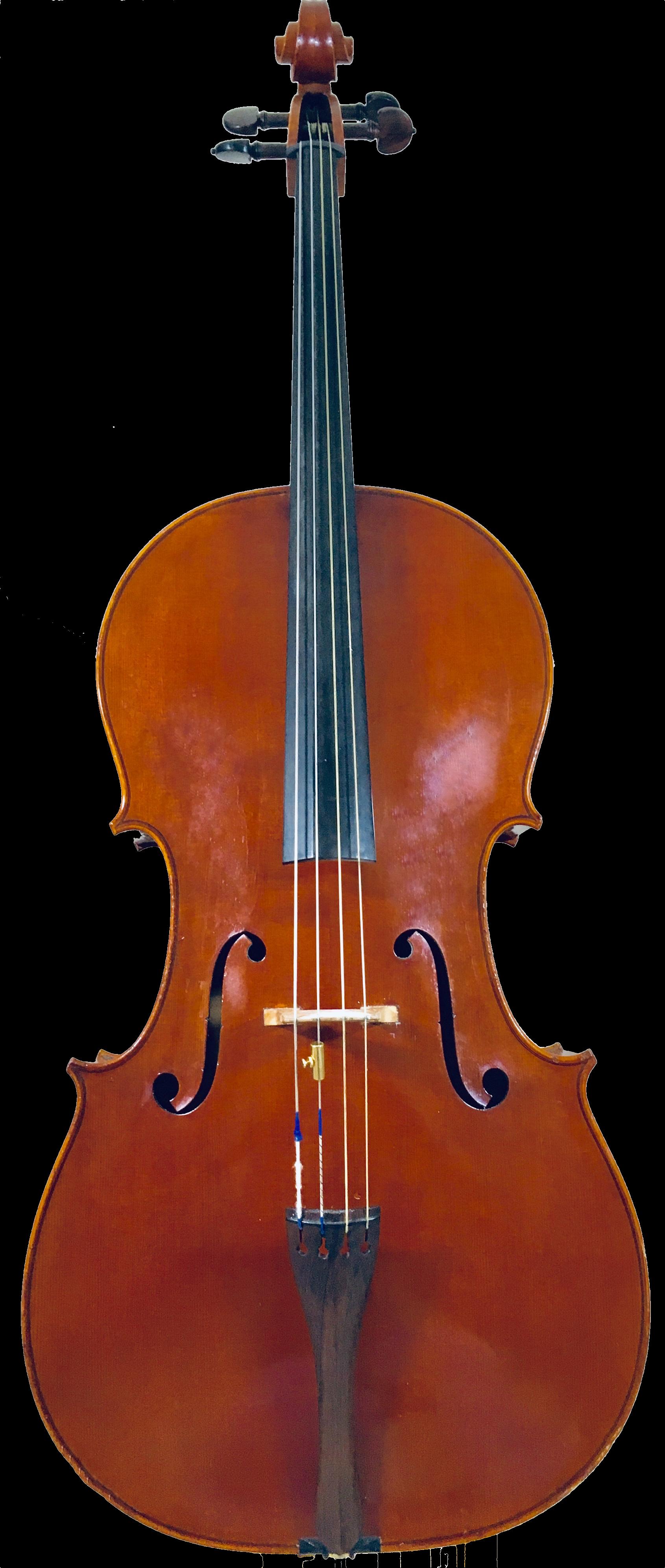 The Tanja Brandon violoncello.