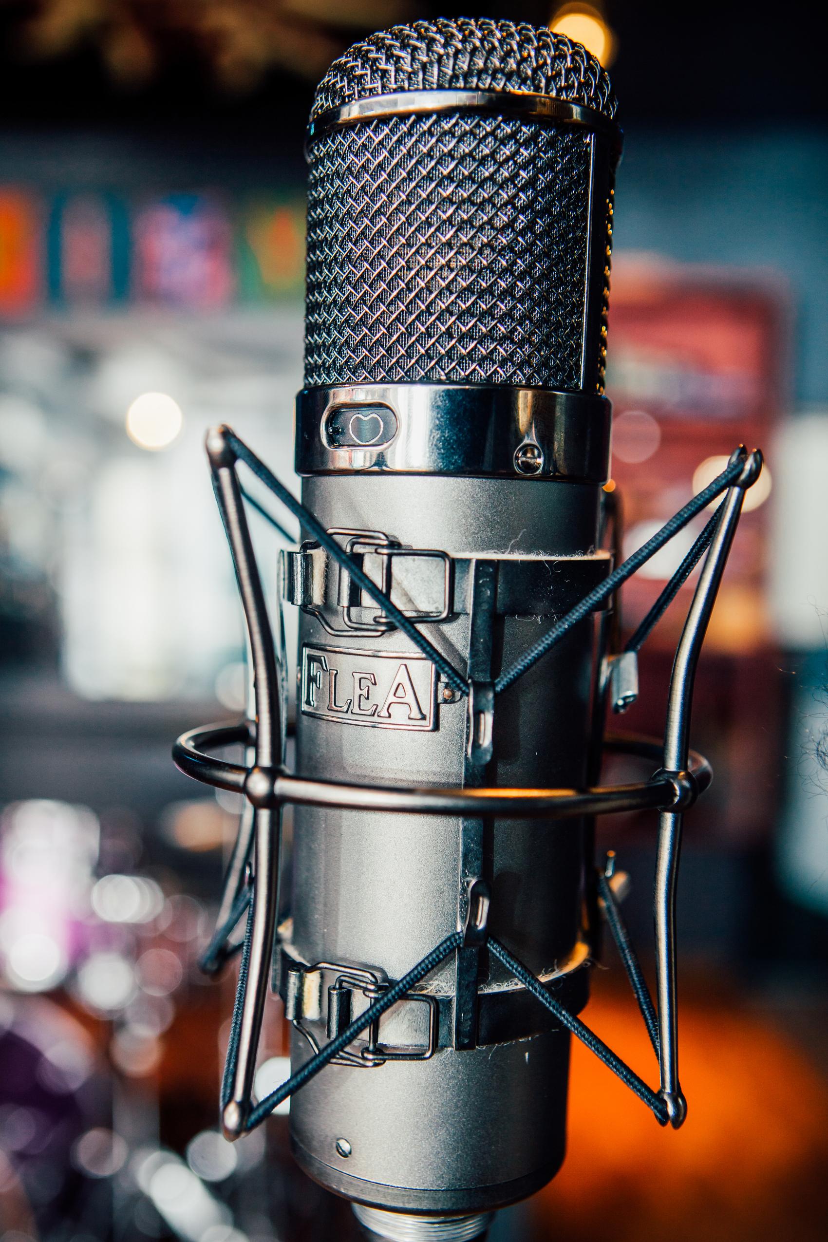 Gravity Studios U47 Microphone.jpg