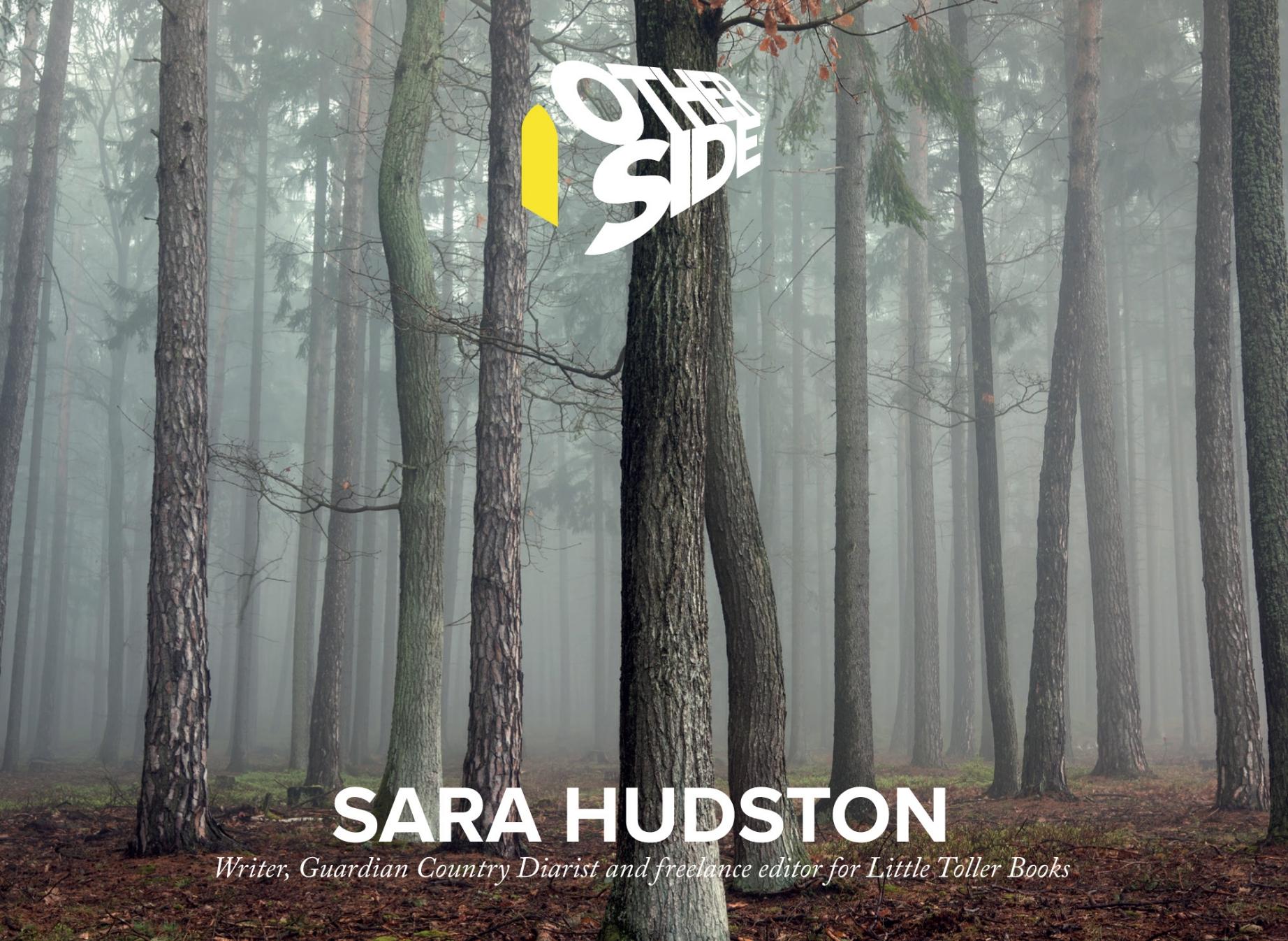 Sara Hudston.jpg