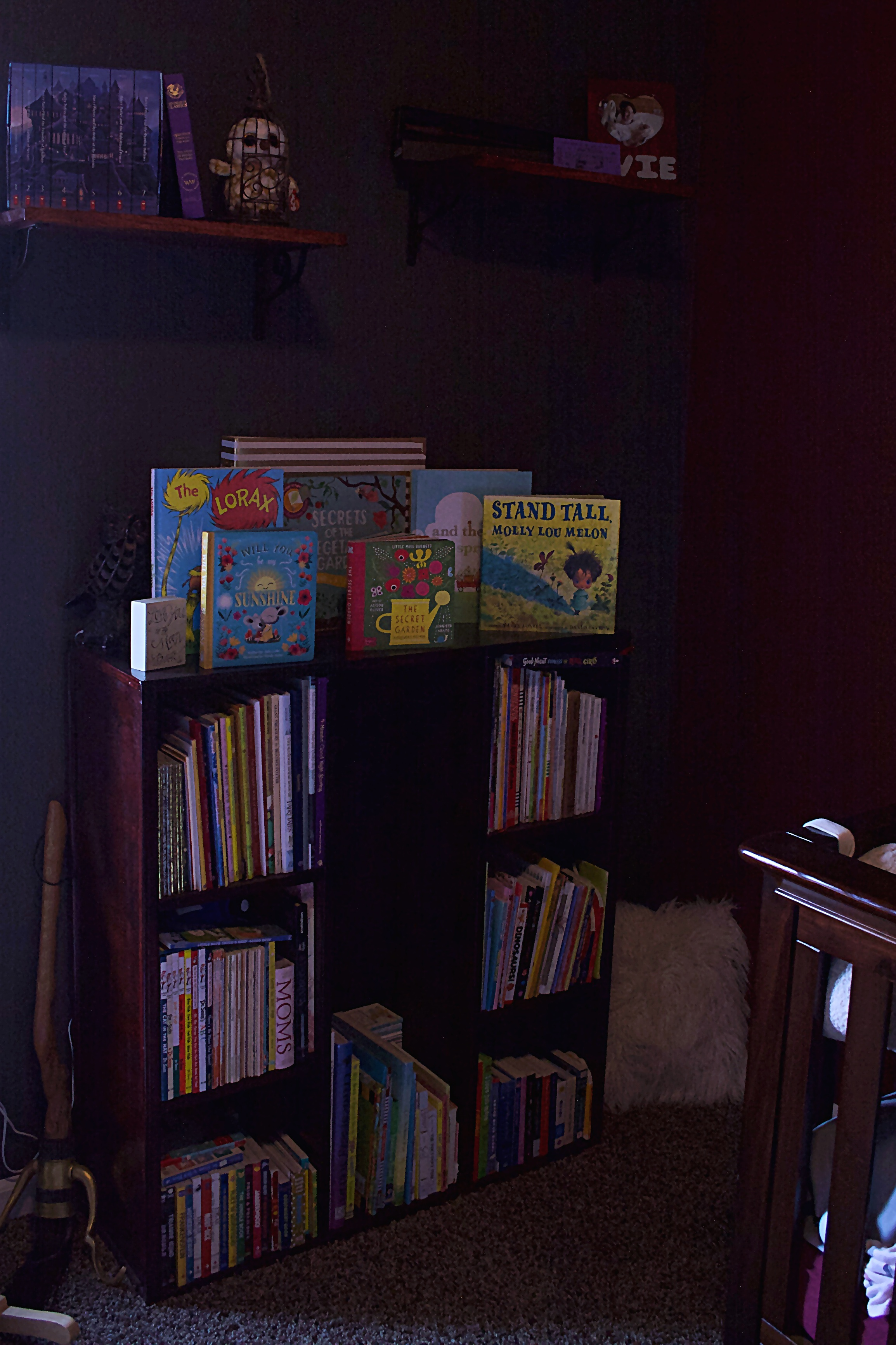 Harry Potter Toddler Room - Bookcase