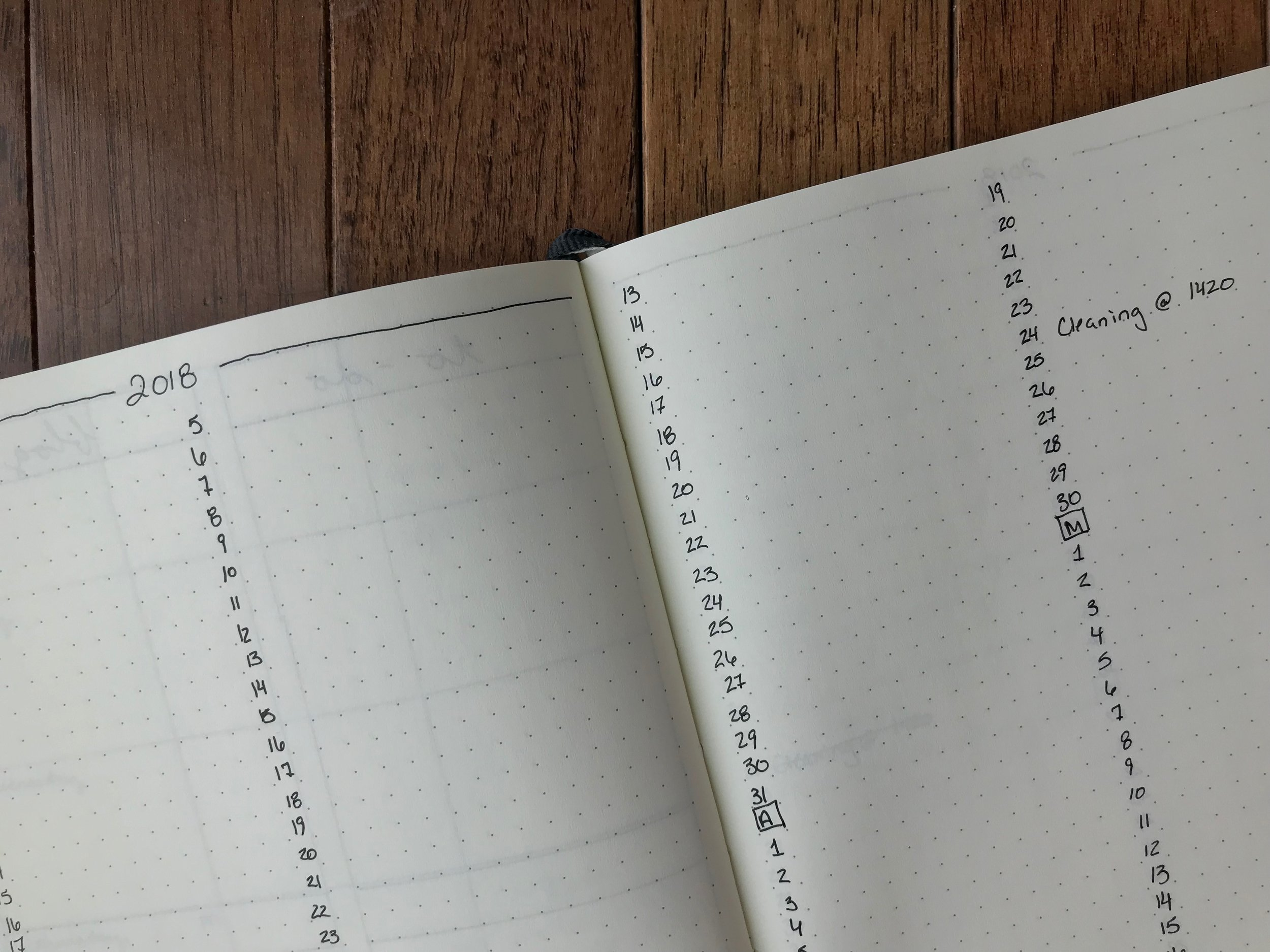 What I learned after 1 year of Bullet Journaling - Peonies and Cream