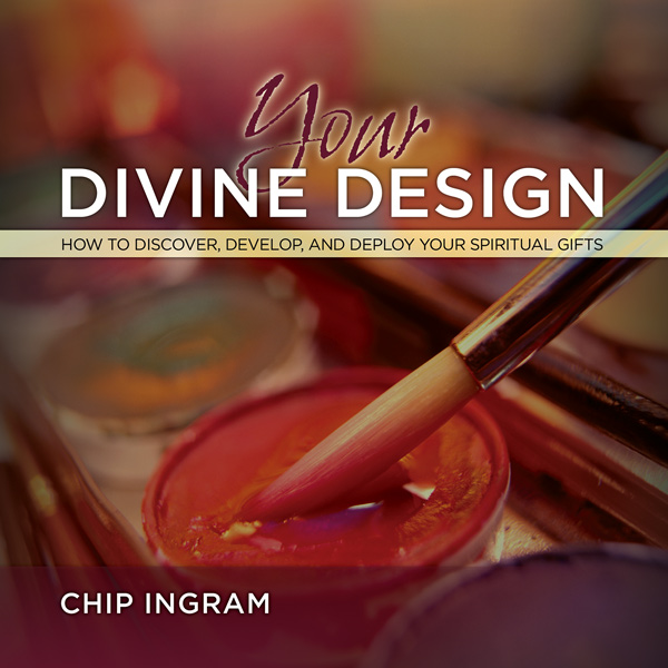 You divine design bible study.jpg