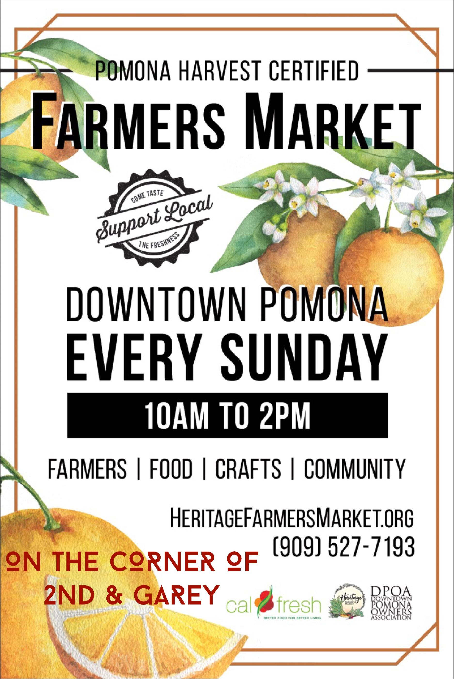 Downtown Farmers Market.JPG