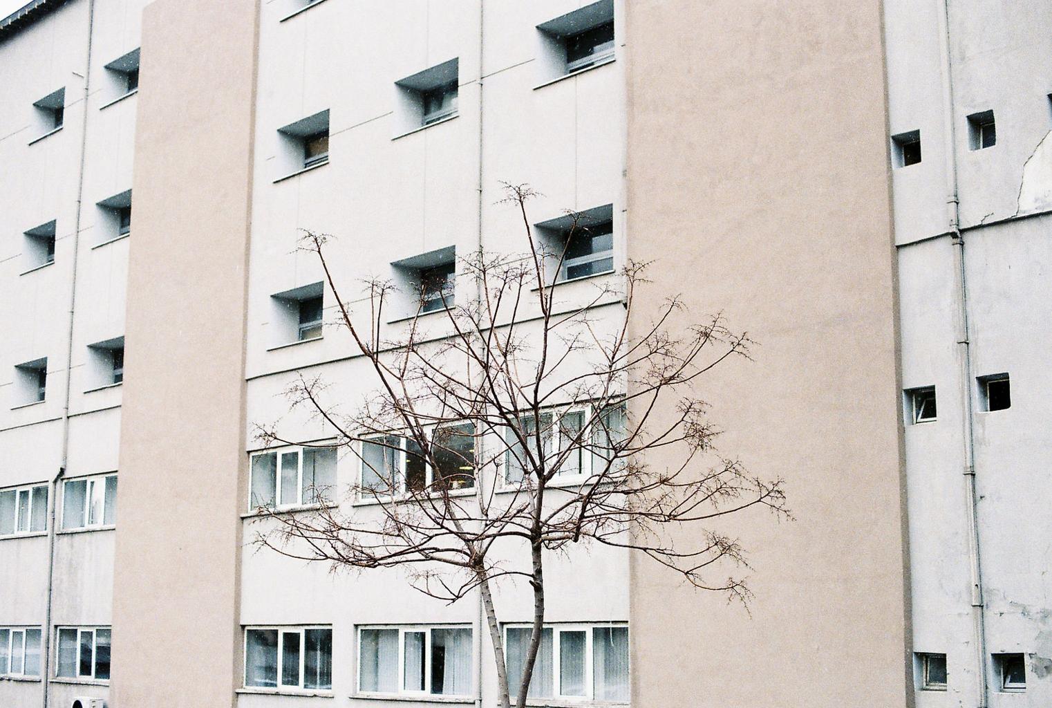 """""""Untitled"""" by elif yalim"""