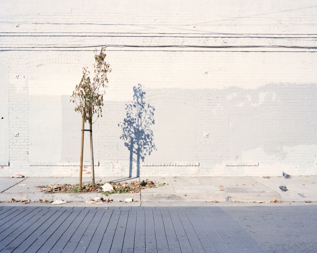 """San Francisco, CA"" by  Ivan Echevarria"