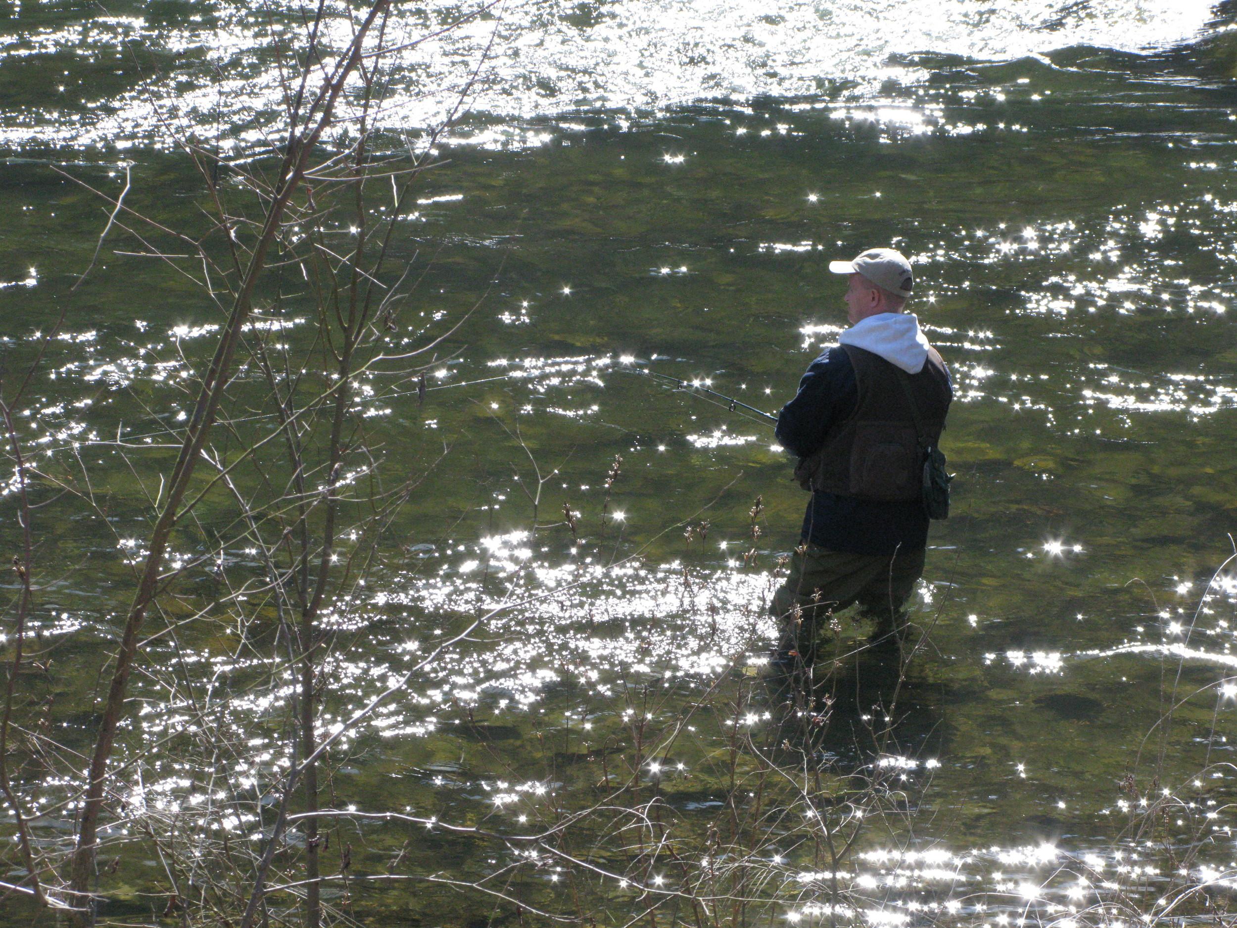 Fishing (Stream) Adventure