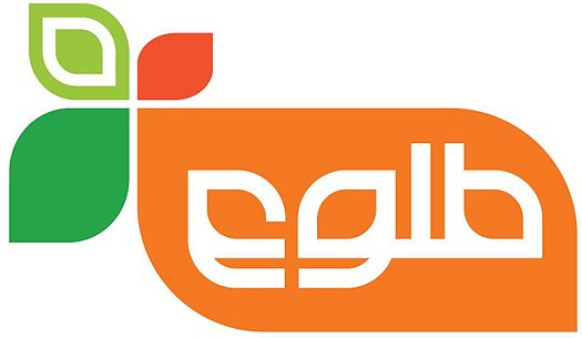 Tolo TV : Afghan Television Network