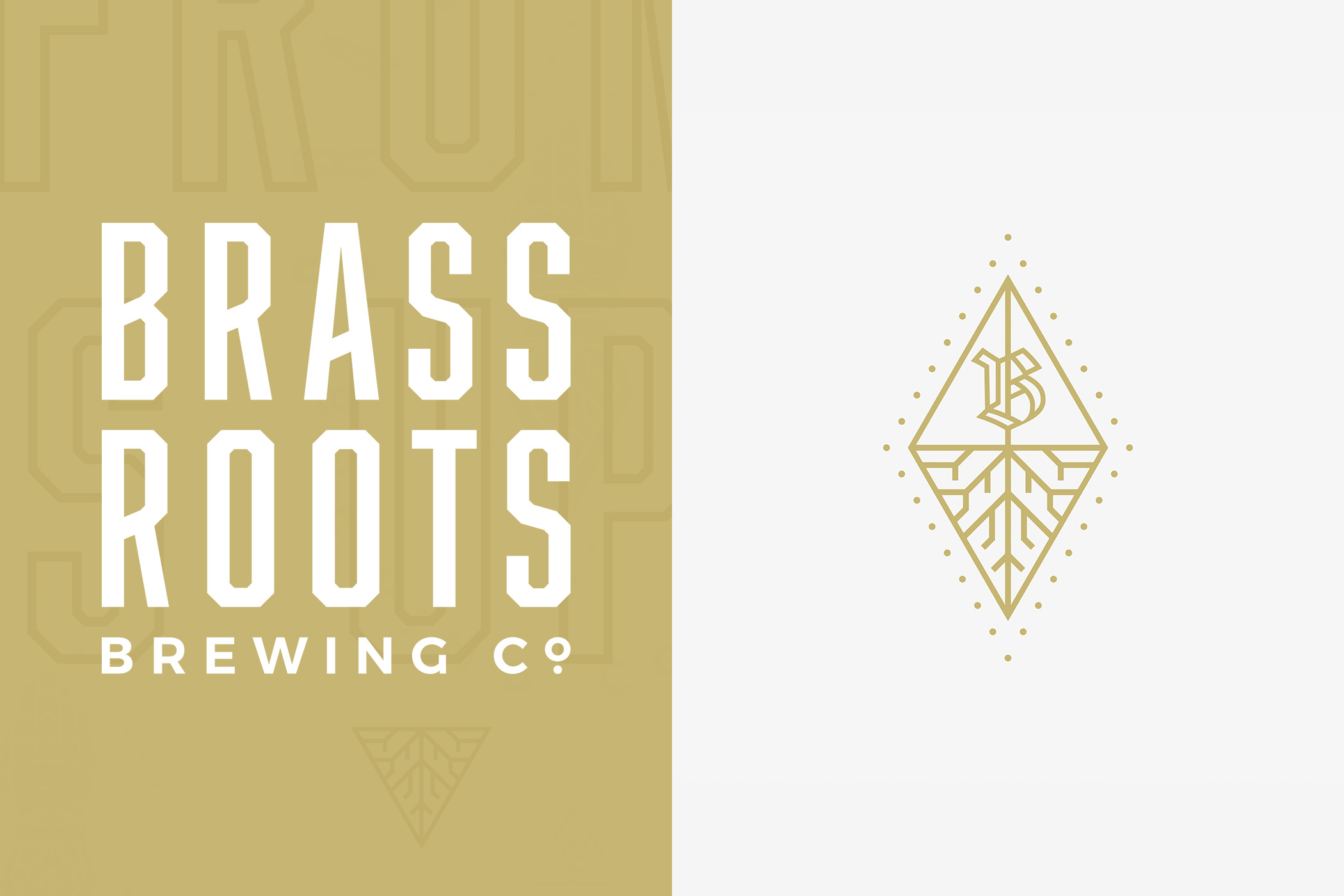 Image 3_Brassroots Brewing Co.jpg