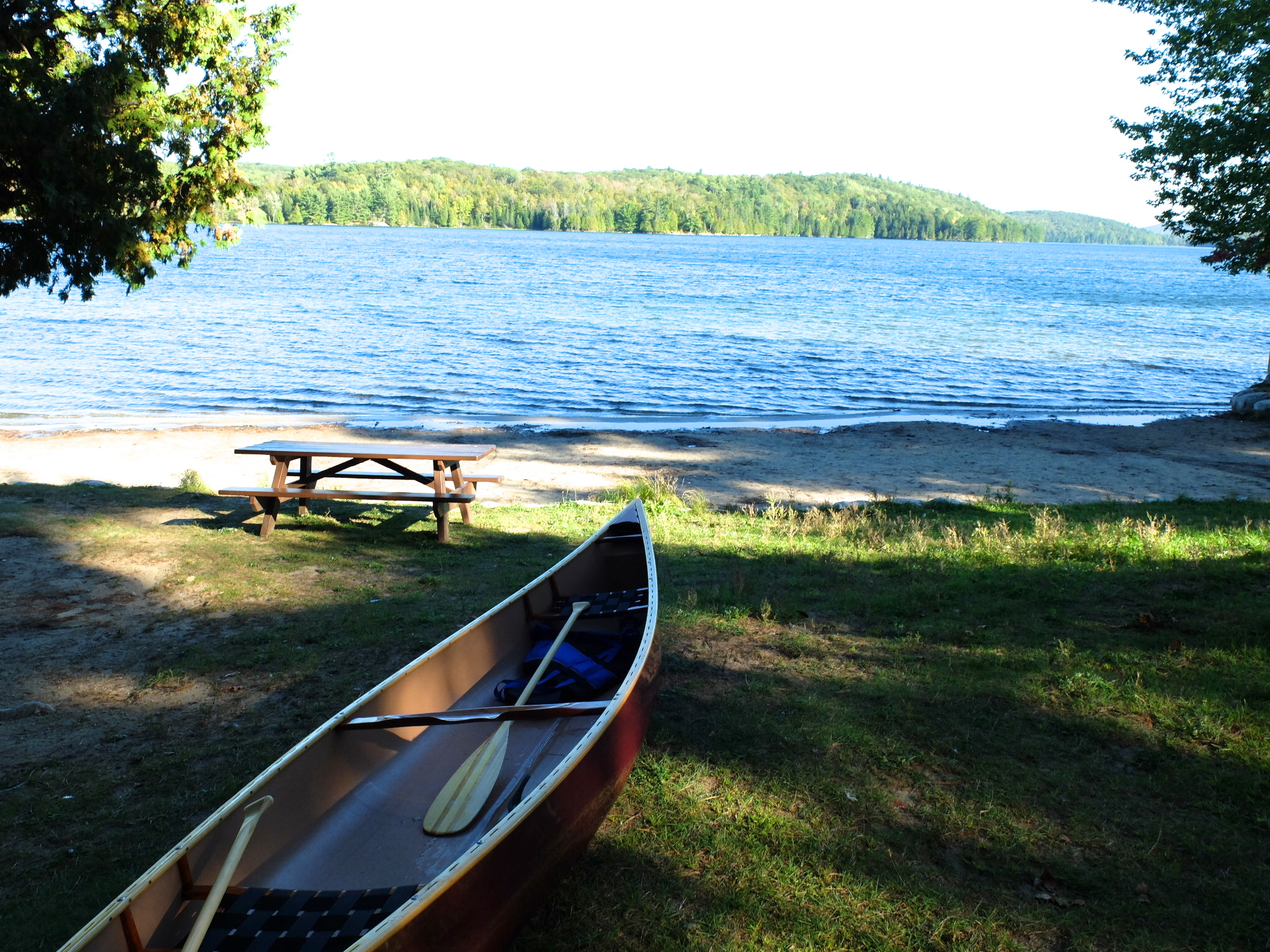 Summer at Lac Philippe - forests, beaches, lakeside ...