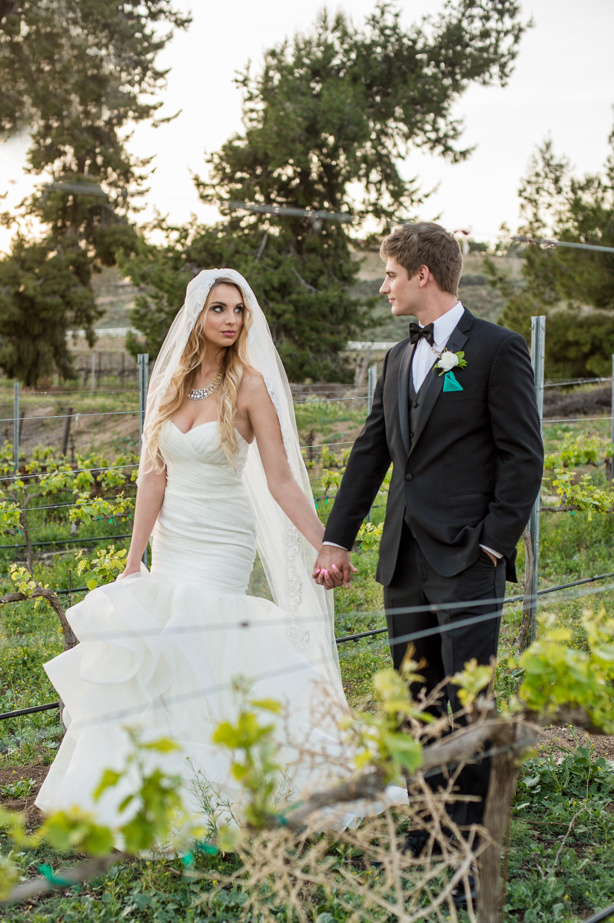 Temecula Wedding Hair and Makeup | Temecula Winery Wedding | Fazeli Cellars Wedding