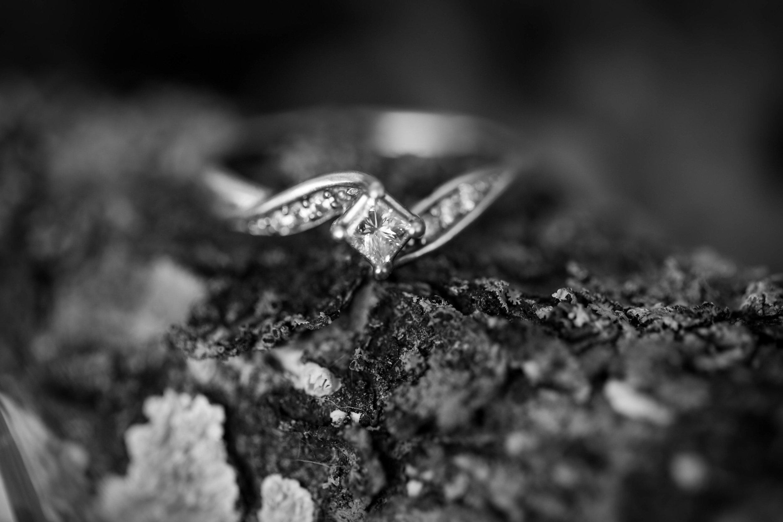 Zachary and Logan's Engagement Photos-13.jpg