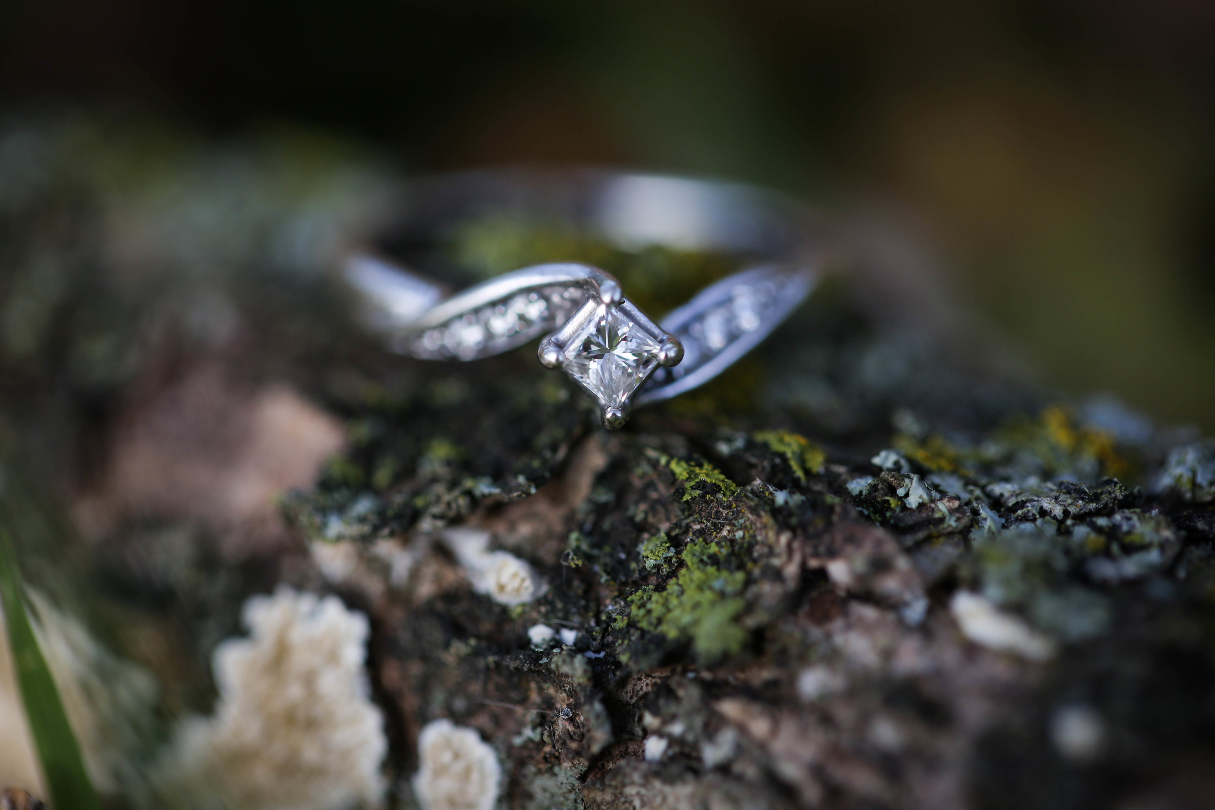 Zachary and Logan's Engagement Photos-14.jpg