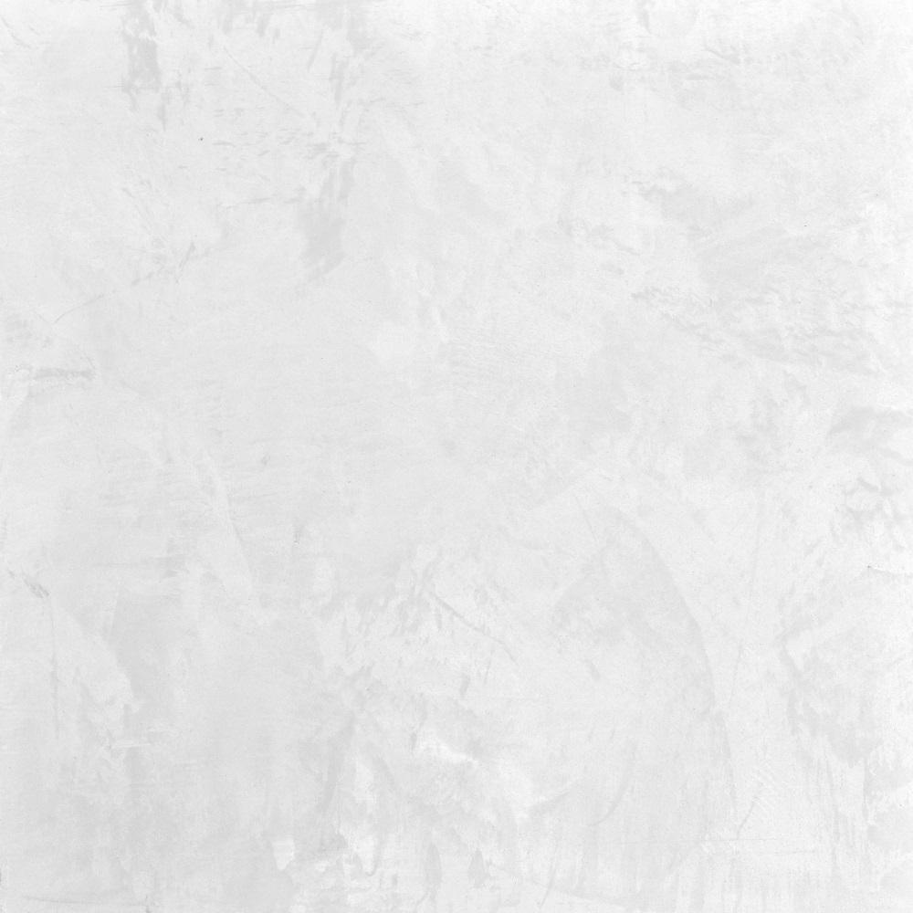 animamundi (1000x1000).jpg