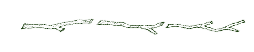 twig divider.png