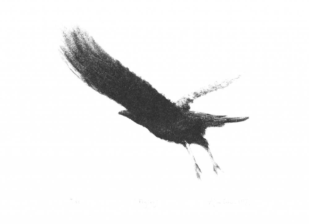 Flying  Lithograph 31.6 x 40cm