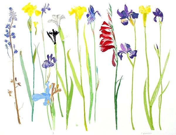 Wild Flowers, 2013  Screenprint, edition of 65 89.5 x 72.5cm