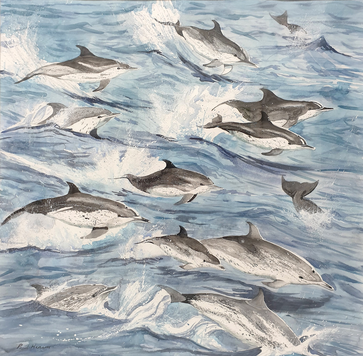 Dolphins  Watercolour on paper 57 x 56cm